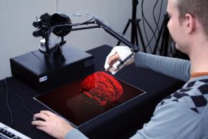 haptic brain